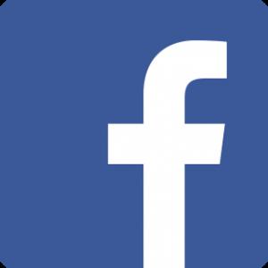 Facebook Icon VEX