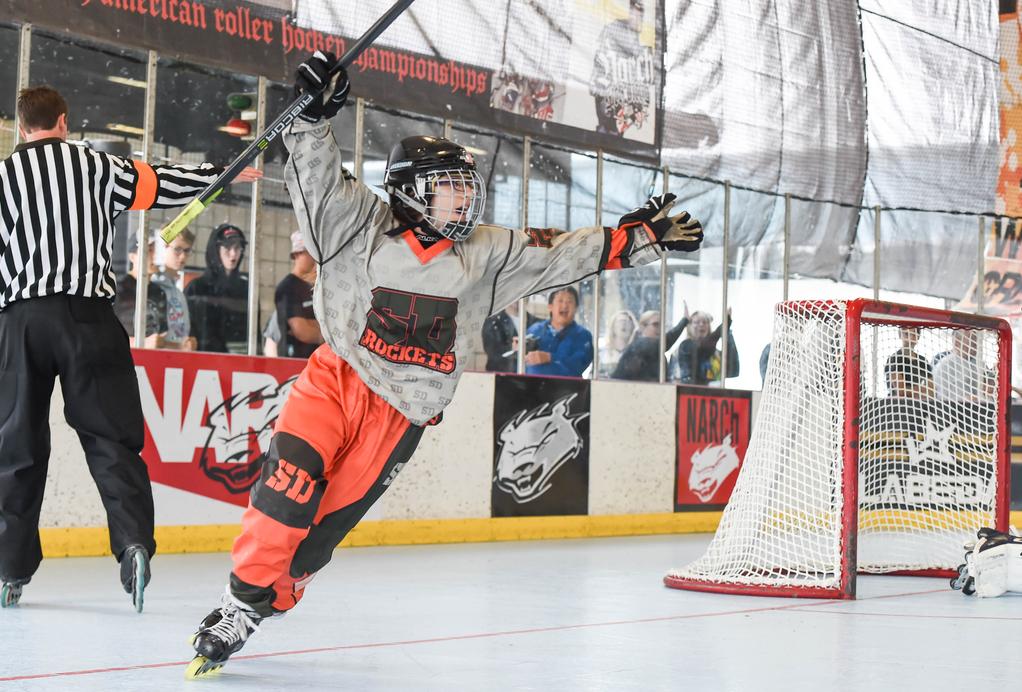 NARCh_Hockey